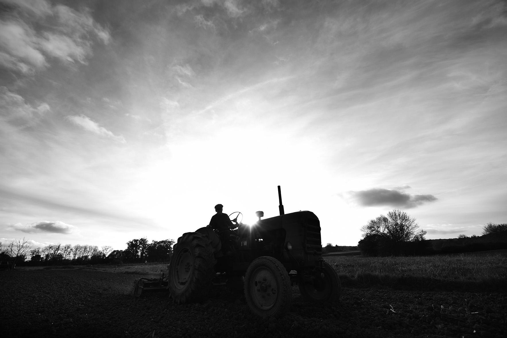 Charney Magri A French farmers secret to longevity 3281 LR