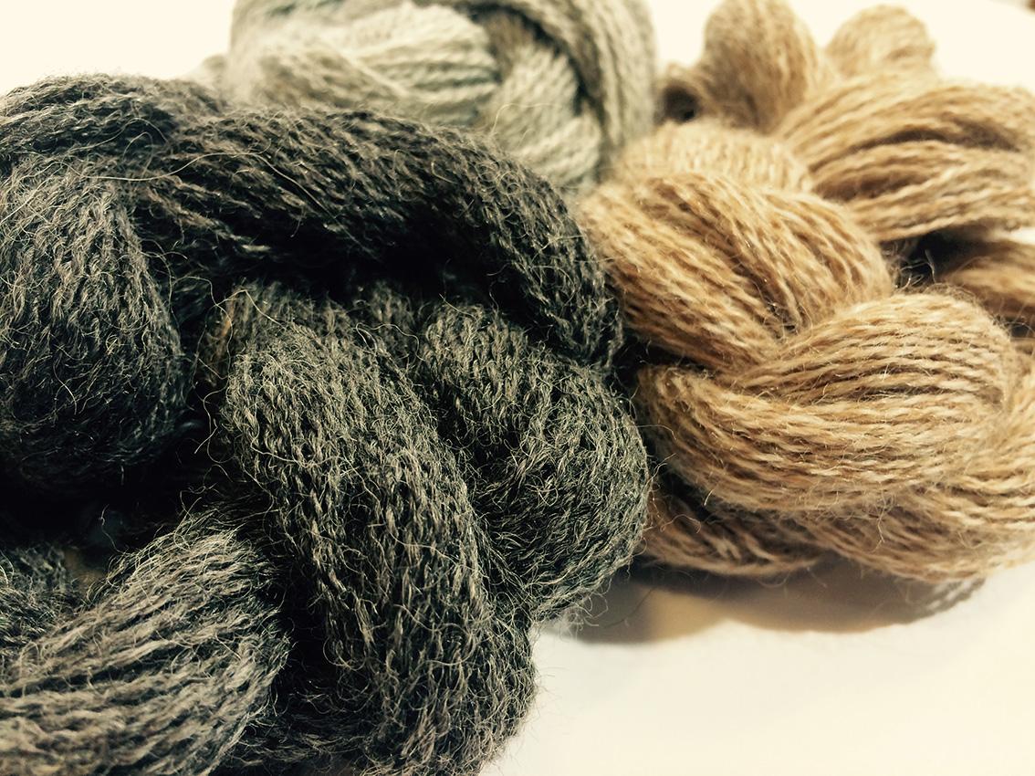 charney-magri-ally-bee-alpaca-yarns